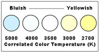 Color appearance can differ in various light sources.