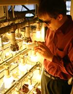 LRC lamp testing lab