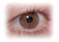 Photo: Close-up of human eye